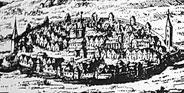 Cetatea orasului Sebes